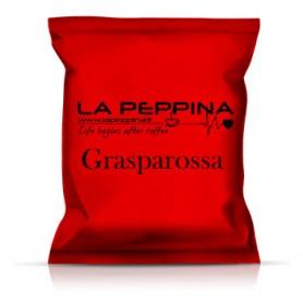 Capsule compatibili Dolce Gusto®*  Grasparossa - pz 80