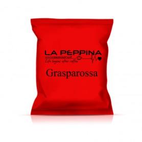 Capsule compatibili Nespresso®*  Grasparossa - pz 50 - 0,25/pz