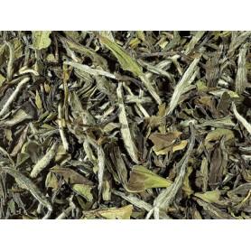 Tè bianco biologico Cina - Pai Mu Tan